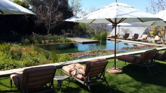 Considering a Natural Pool for Your Holiday Rental - EcoPools