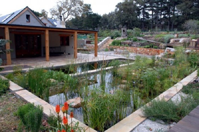 Considering a Natural Pool for Your Holiday Rental - wetlandPOOLS